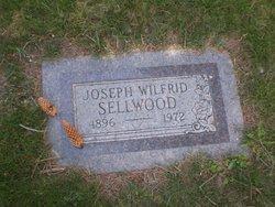 Joseph W Sellwood