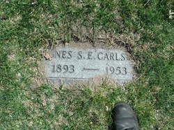 Agnes S. E. Carlson