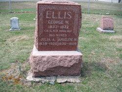 George W Ellis