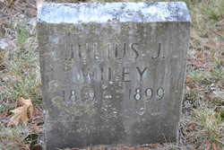 Julius J Wiley