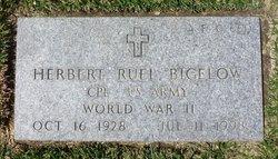 Herbert Ruel Bigelow