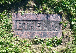 Ethel Amy Ackerman