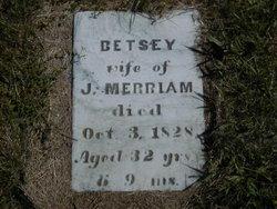 "Elizabeth ""Betsey"" <I>Massey</I> Merriam"