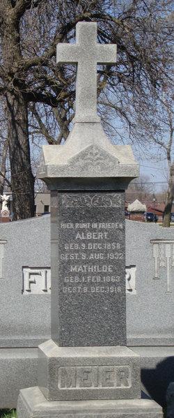 Albert F Meier