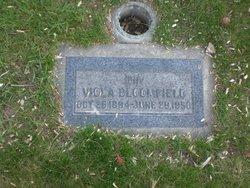 Viola <I>Schaad</I> Bloomfield