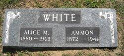 Ammon White
