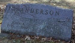 Faye C Anderson