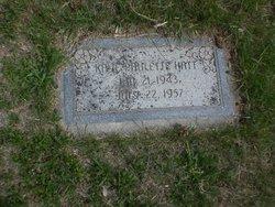 Kaye Paulette Hatt