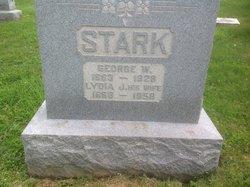 Lydia Jane <I>DeLong</I> Stark