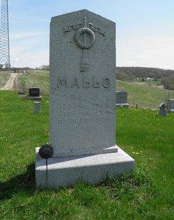 Ray W Mallo