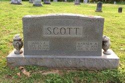 Mahala Ann <I>Wilson</I> Scott