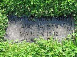 Carolyn Joan Agee