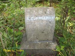 Nancy Catherine <I>Reese</I> Freeman
