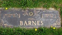Homer Allen Barnes