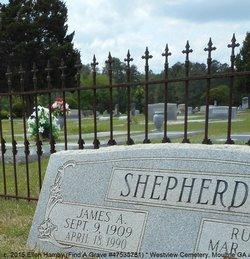 James Albert Shepherd