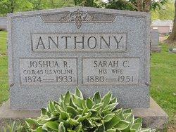 Sarah Catherine <I>Garner</I> Anthony
