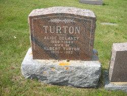 Albert Turton