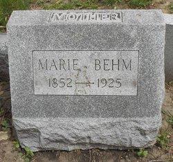 Mary L <I>Hartman</I> Behm