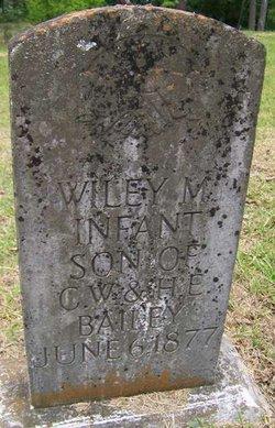 Wiley M Bailey