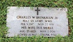 Iris Merle Brinkman