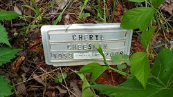 Cheryl Lane <I>Houston</I> Cheesman