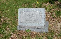 Carl W. Briggs