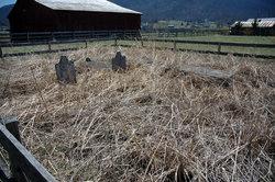 Sevier Cemetery