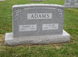 Harry Ambrose Adams