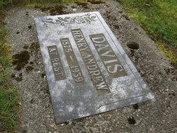 Henry Andrew Davis