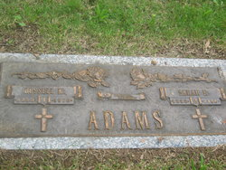 Sarah F Adams