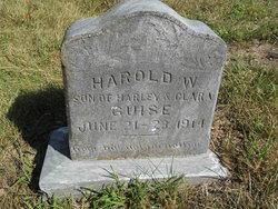 Harold W Guise