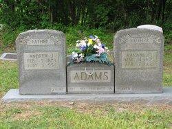 Andrew Jackson Adams