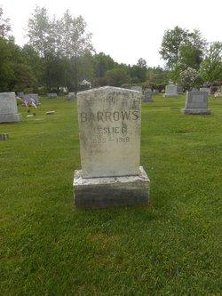 Leslie G Barrows