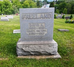 David A Freeland