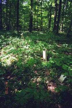 McPike-Foster Cemetery