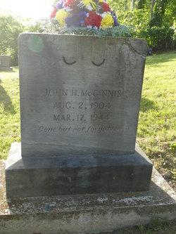 John Henry McGinnis