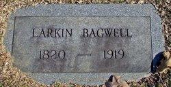 Larkin Bagwell