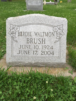 Birdie <I>Waltmon</I> Brush