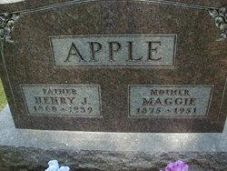 Henry J. Apple