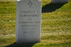 Timothy T Fernandez
