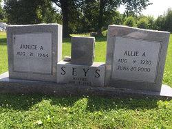 Allie Andrews Seys