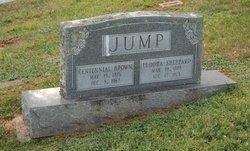 Centennial Brown Jump