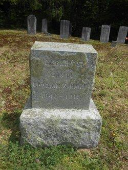 Albert E Carpenter
