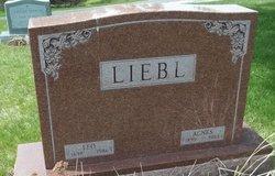 Leo Grover Liebl