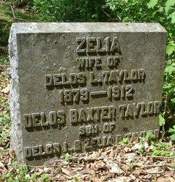 Zelia Taylor