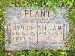 David G Plant