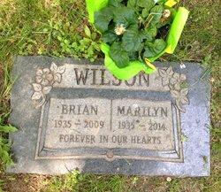 Brian G Wilson