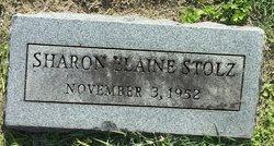 Sharon Elaine Stolz