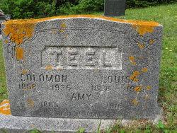 Amy Teel
