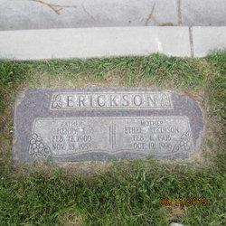 Henry Erickson